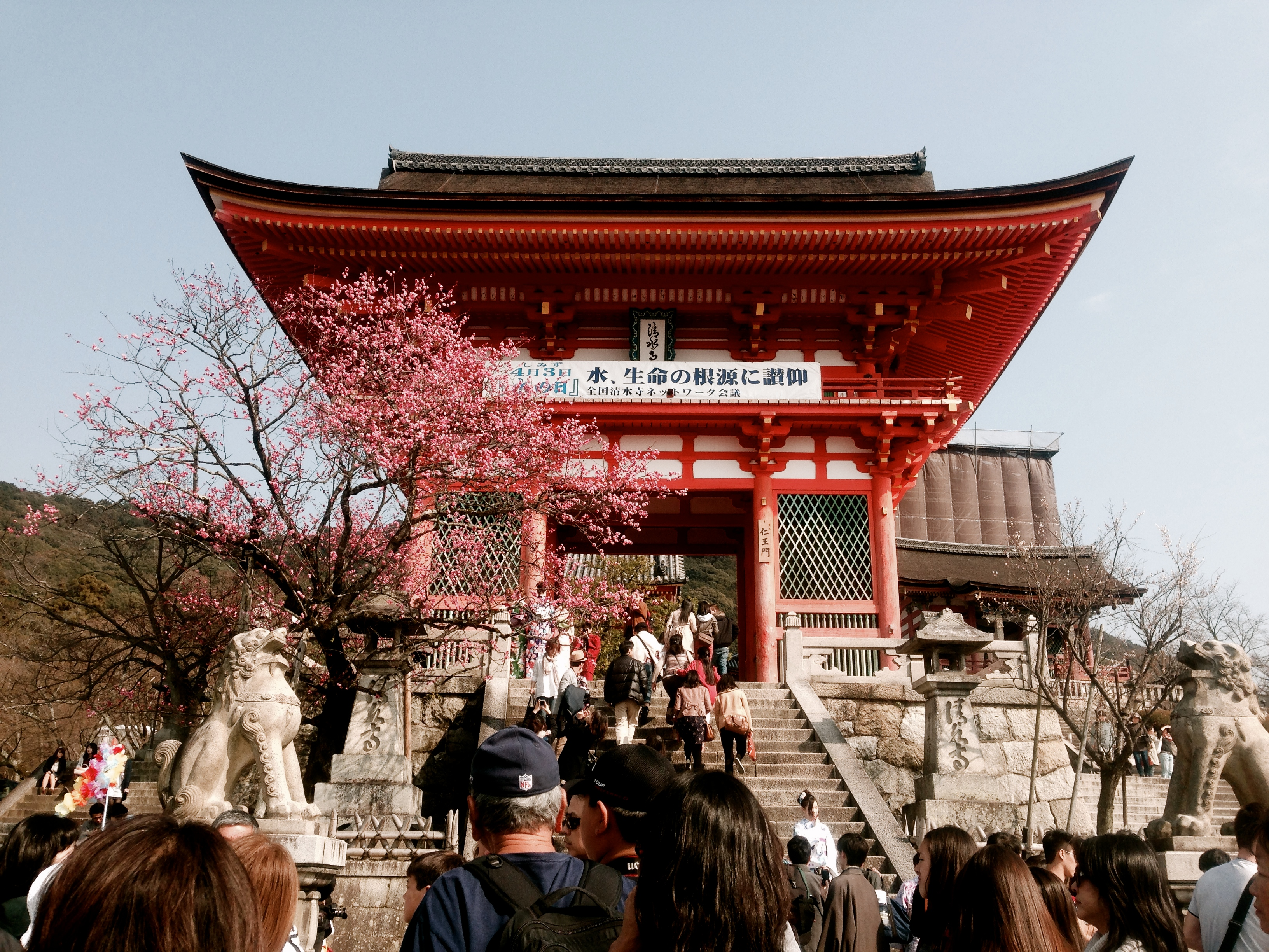 Kyoto & Tokyo Spring Break Tour