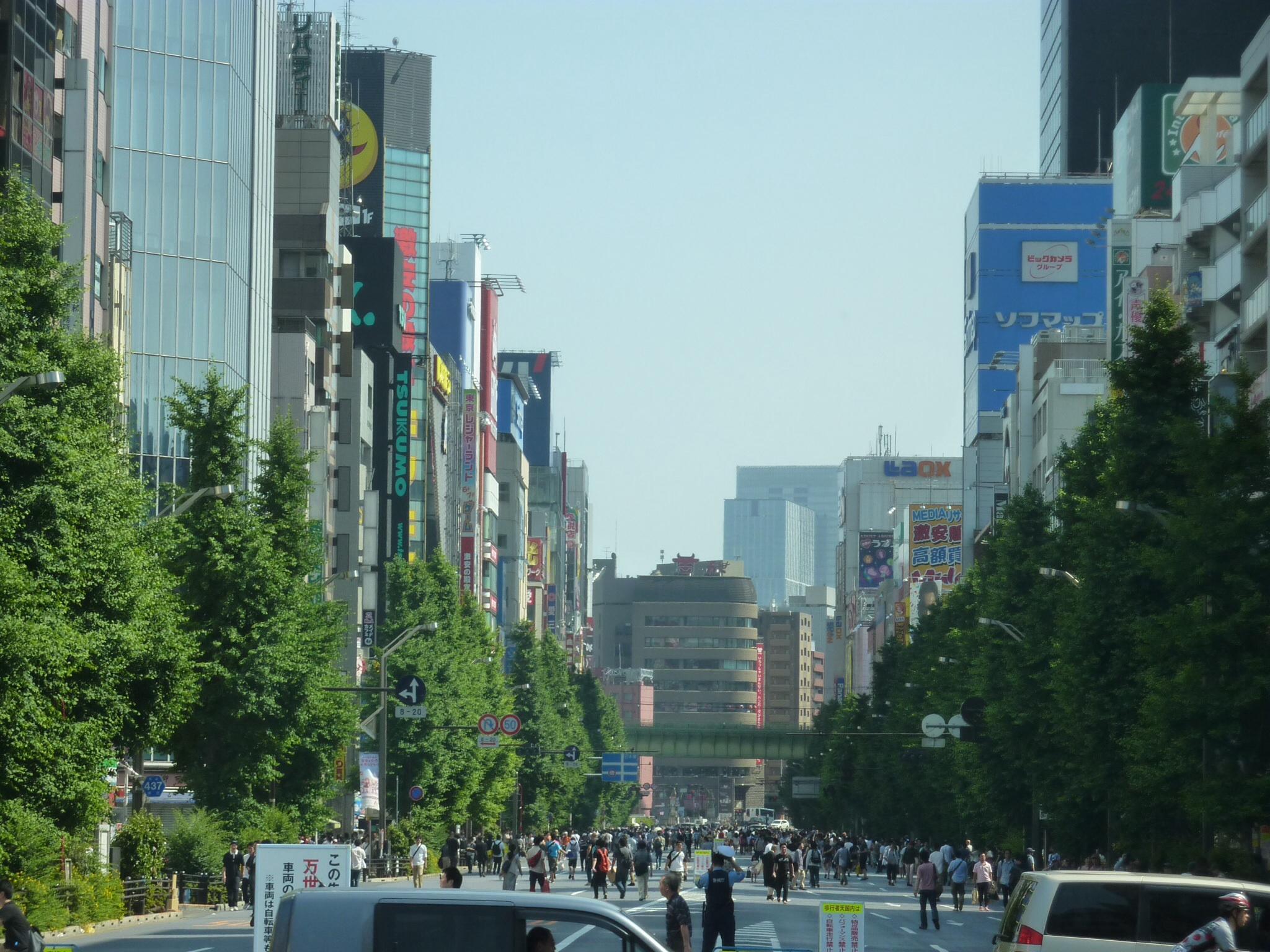 Summer Family Fun in Tokyo