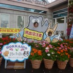 hokkaido autumn tour 15 040