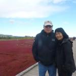 hokkaido autumn tour 15 203b