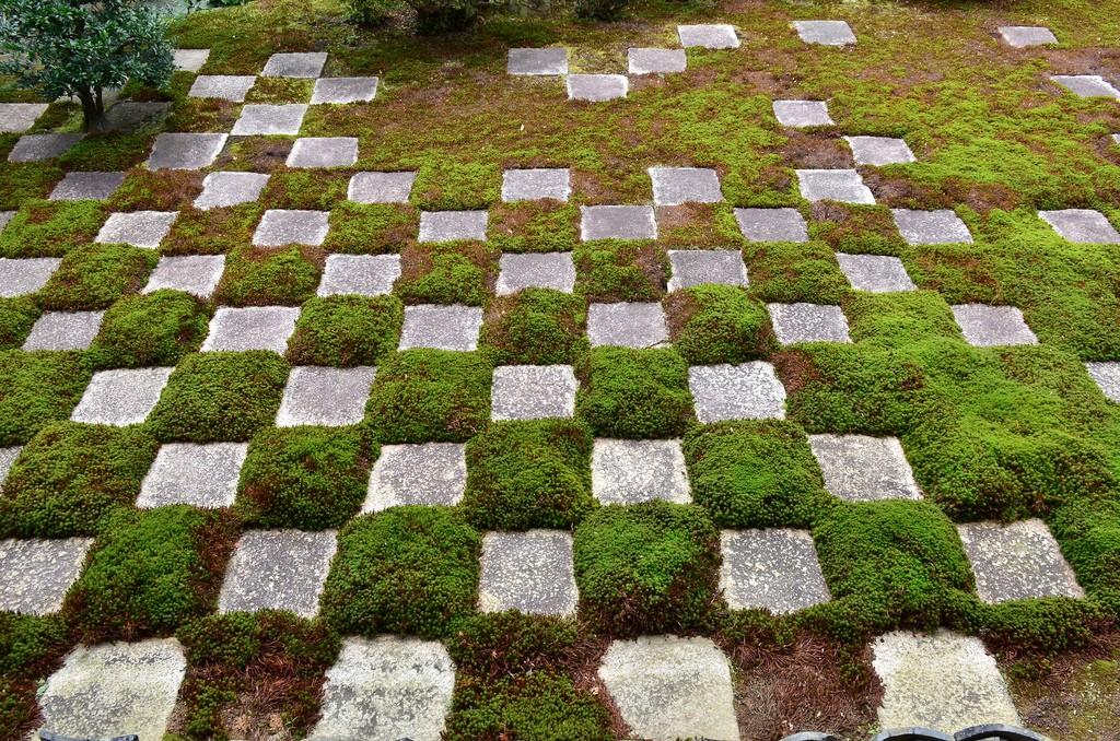 tofukuji garden