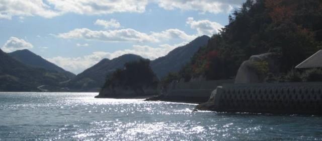 The Bouncing Bunny Island of Okunoshima