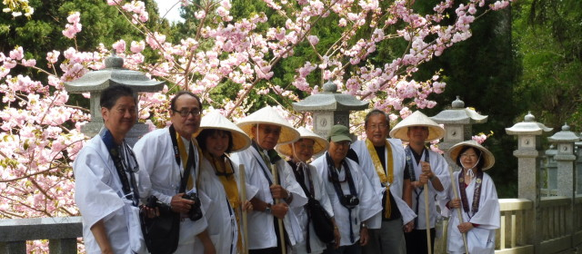 Escorted Tour from Honolulu Shikoku OHENRO Pilgrimage Tour Vol 1