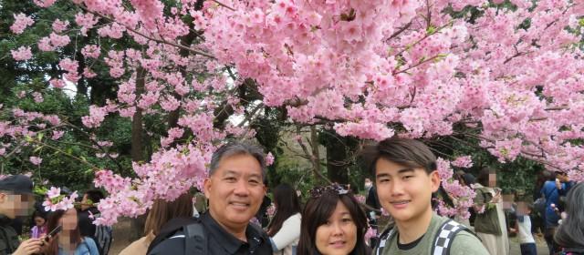 Escorted Tour from Honolulu  Kanto Cherry Blossom Tour –  Tokyo & Lake Kawaguchi